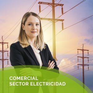 Comercial Sector Electricidad