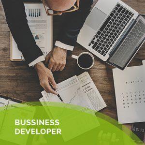 Bussiness developer