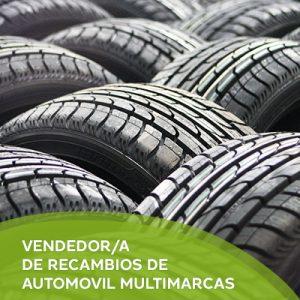VENDEDOR/A DE RECAMBIOS DE AUTOMOVIL MULTIMARCAS