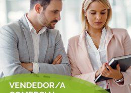 Vendedor/a Comercial de Recambios Auto/Moto/Pintura